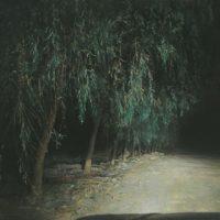 陸亮,夜路 - 柳樹,2009,油彩/畫布,60 x 90 cm