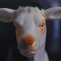 林彥瑋,玩物參照 05,2012,油彩/畫布,38 x 45 cm