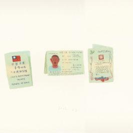 王玉平,大陸居民入台證,2012,壓克力顏料、油畫棒/紙,55.5 × 78.5 cm