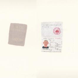 王玉平,大陸居民往來台灣通行證,2012,壓克力顏料、油畫棒/紙,55.5 × 78.5 cm