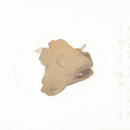 王玉平,半個豬腳,2012,水彩/紙,23 × 31 cm