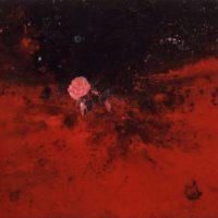 司徒強,桃紅舍利,2009,壓克力顏料/麻布,123 x 185 cm
