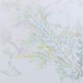 鄭君殿,蕨160704,2016,色鉛筆/紙/畫布,87 x 79 cm