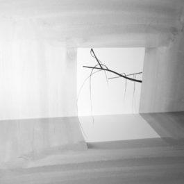 王雅慧,問影#1,2017,微噴輸出於藝術紙,120 x 120 cm