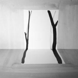 王雅慧,問影#2,2017,微噴輸出於藝術紙,120 x 120 cm