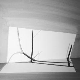 王雅慧,問影#3,2017,微噴輸出於藝術紙,120 x 120 cm