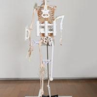 金氏徹平,飛濺與薄片(人骨架/2017)#3,2017,塑膠、鋼、木製物件、人骨架模型,185 x 62 x 38 cm